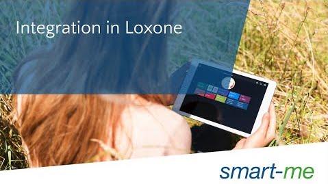 Integration von Echtzeit Energiedaten in Loxone