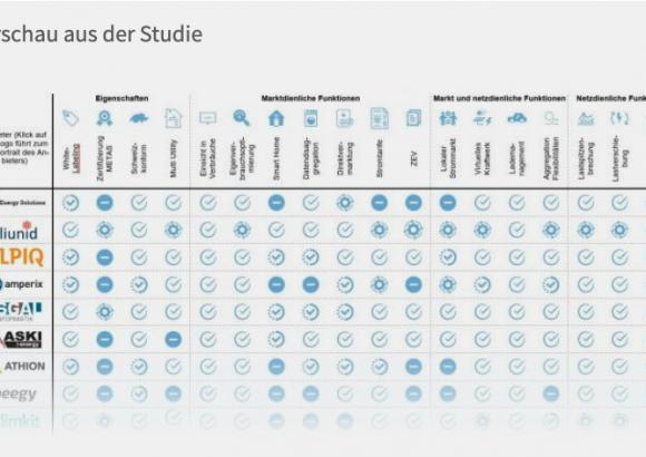 Marktübersicht Energiemanagmentsysteme von Energie Zukunft Schweiz