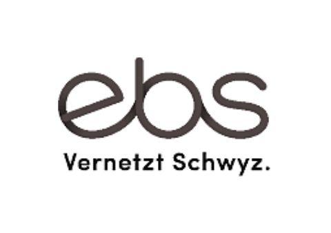 ebs Energie AG